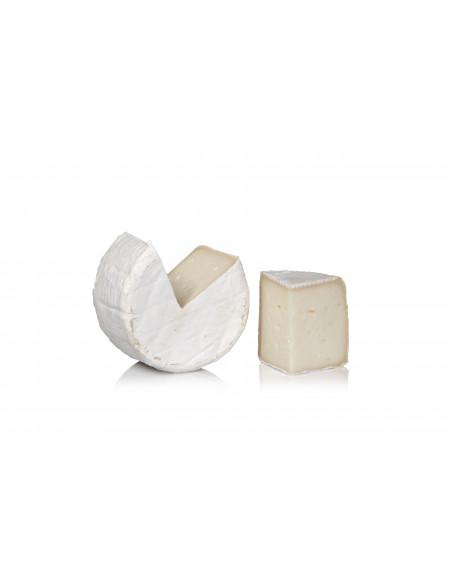 Queso Pasta blanda con Penicillium Soterano