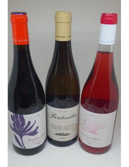 Lote de vino Bodega Pardevalles